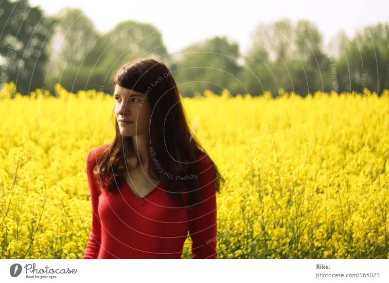 Frühlingsmädchen. Frau Mensch Natur Jugendliche Pflanze Sommer Einsamkeit gelb Farbe feminin Frühling Freiheit Glück träumen Landschaft Feld