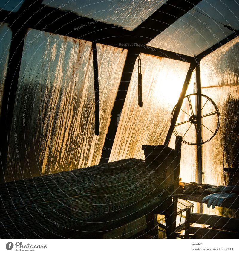 Rad ab Wasser Winter Klima Schönes Wetter Eis Frost Garten Gewächshaus Gärtnerei Dinge Handschuhe Arbeitsgeräte Werkzeug Glas Metall leuchten kalt nass ruhig