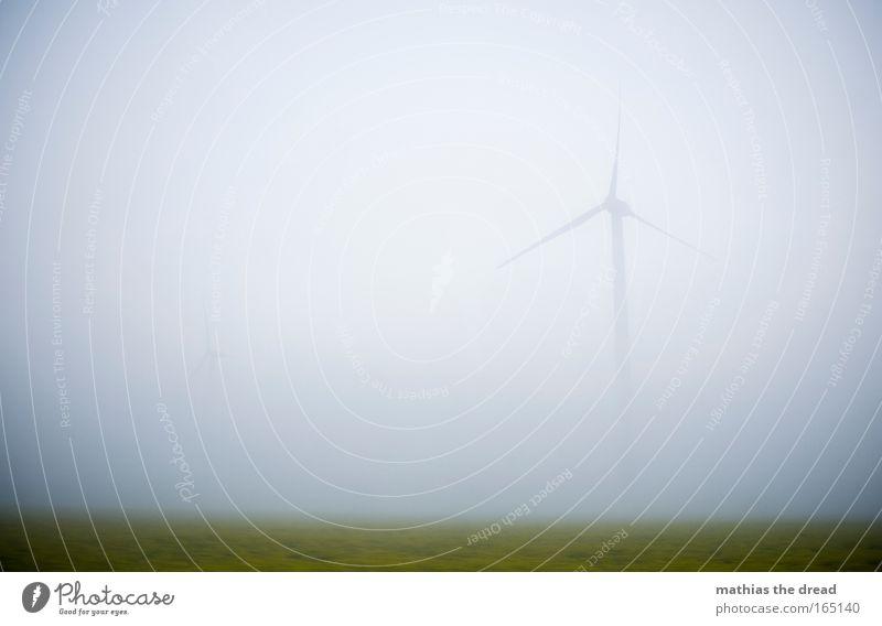 WINDIGE ANGELEGENHEIT Natur schön Pflanze Sommer ruhig gelb Wiese Landschaft Luft Feld Nebel Wind Umwelt Energiewirtschaft stehen Klima