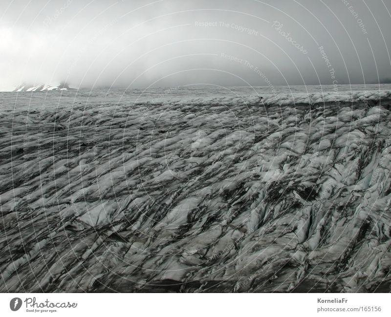 Gletscherstimmung Natur Sommer Ferien & Urlaub & Reisen Einsamkeit dunkel Schnee Tod Berge u. Gebirge grau Traurigkeit Landschaft Eis wandern Nebel Wetter