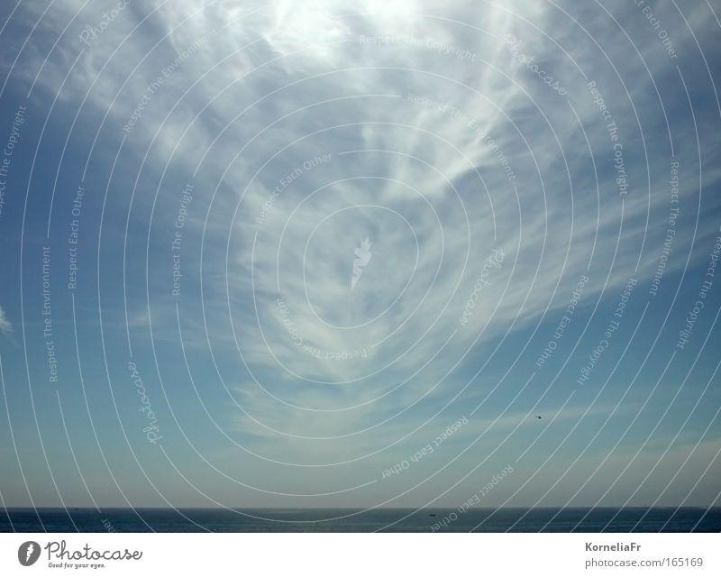 Federwolke Himmel Natur blau Wasser weiß Ferien & Urlaub & Reisen Meer Sommer Wolken Landschaft Luft Horizont Wetter Urelemente Sehnsucht Schifffahrt