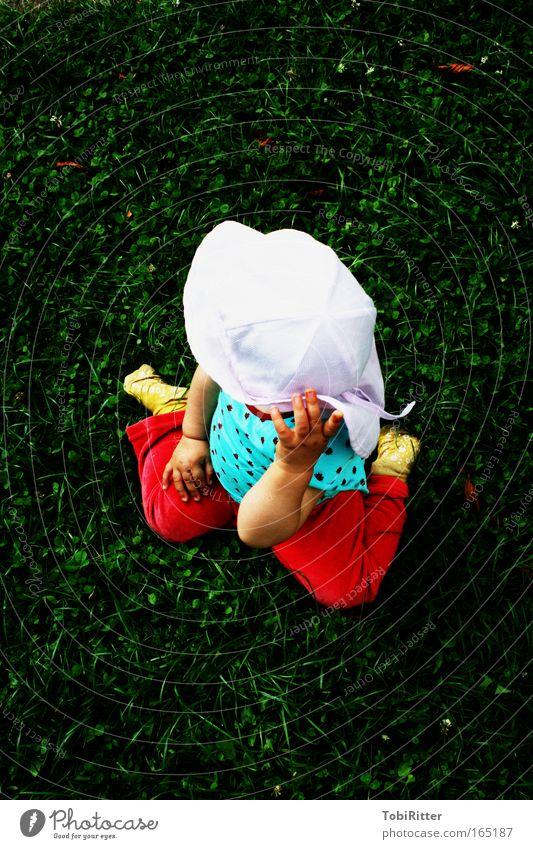 Ausflug ins Grüne Mensch Kind Mädchen Sommer Farbe Umwelt Wiese Spielen Gras Denken Kindheit Zufriedenheit Glas Ausflug beobachten Neugier
