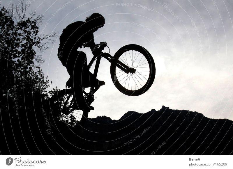 Bike Baum Freude schwarz Berge u. Gebirge Sport Bewegung springen Gesundheit Fahrrad Freizeit & Hobby Alpen fahren Fitness Fahrradfahren Mut Sportler