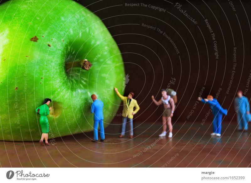 Miniwelten - kommt Jungs, probiert mal... Mensch Frau Mann grün Erwachsene Essen feminin Menschengruppe Lebensmittel braun Tourismus maskulin Frucht Ernährung