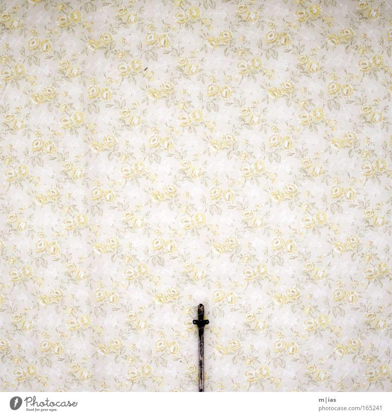 Rosendünger alt Blume gelb Wand Traurigkeit Mauer braun Raum dreckig Wohnung ästhetisch retro authentisch Innenarchitektur Tapete