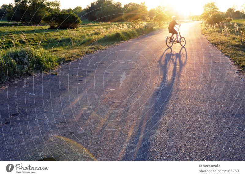 auf zur sonne! Mensch Jugendliche 1 8-13 Jahre Kind Kindheit Natur Sonnenlicht Schönes Wetter Feld Fahrradfahren Straße Erholung leuchten grün Glück