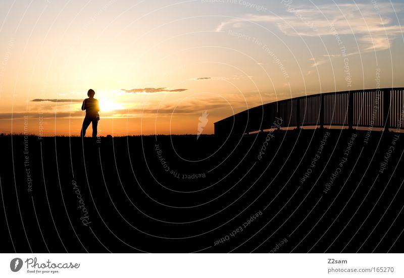 my place Farbfoto Außenaufnahme Abend Silhouette Sonnenaufgang Sonnenuntergang Gegenlicht Freizeit & Hobby Ferne Freiheit Sommer Landschaft Himmel Horizont