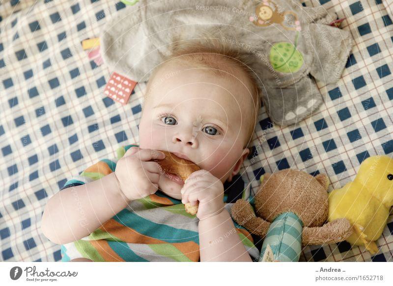 Brezel schmeckt gut feminin Kind Baby Kleinkind Mädchen Kindheit 1 Mensch 0-12 Monate Essen erste Mahlzeit nagen Blick in die Kamera blaue Augen liegen