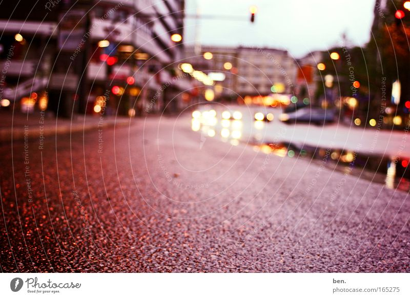 Auf der Straße Farbfoto Außenaufnahme Textfreiraum unten Dämmerung Reflexion & Spiegelung Starke Tiefenschärfe Stadt Menschenleer Haus Straßenverkehr