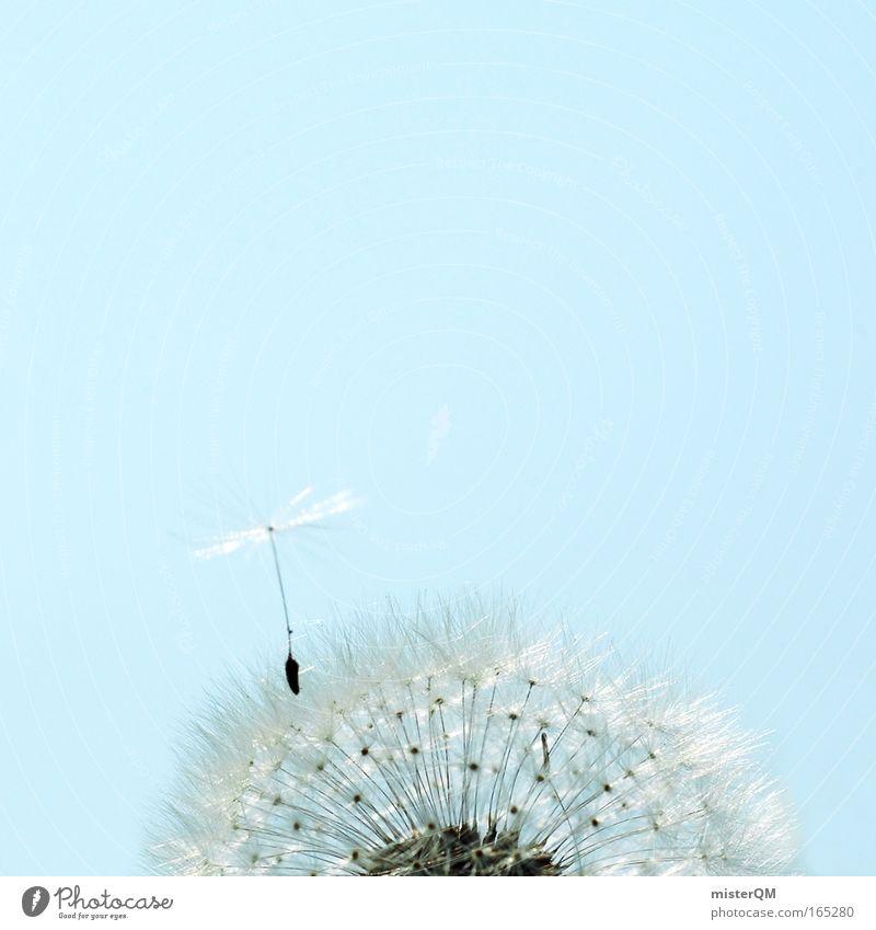 Durchstarter mit Höhenangst. Farbfoto mehrfarbig Außenaufnahme Menschenleer Tag Sonnenlicht Schwache Tiefenschärfe Totale Kunst Museum Medien fliegen klein
