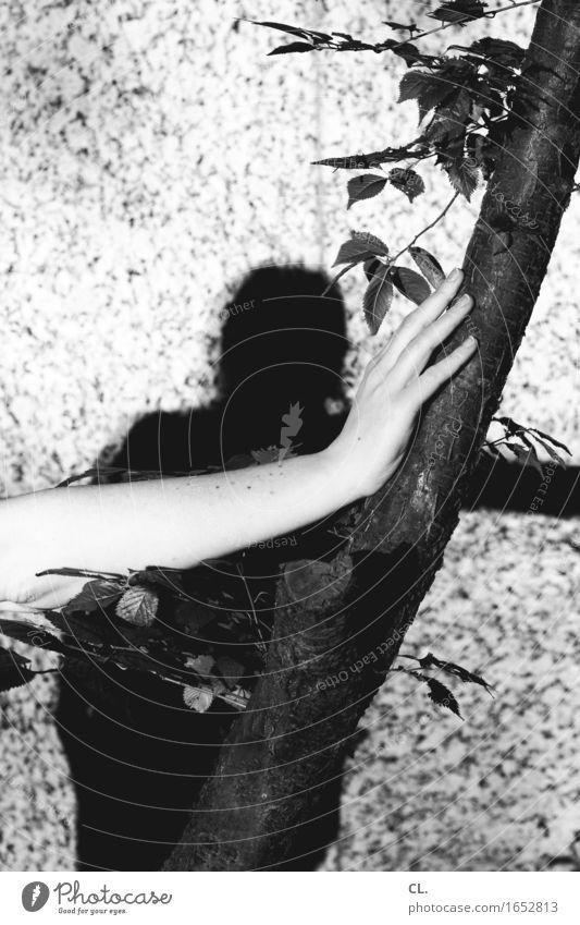 hand auf baum Mensch feminin Frau Erwachsene Leben Arme Hand Finger 1 Umwelt Natur Baum Mauer Wand festhalten Schwarzweißfoto Außenaufnahme Textfreiraum links
