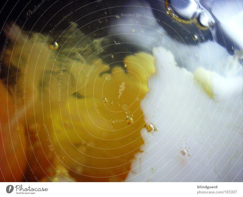 Eisprung weiß gelb Ernährung Lebensmittel Kochen & Garen & Backen abstrakt mischen Schmiererei roh Eigelb Makroaufnahme Protein Eiklar