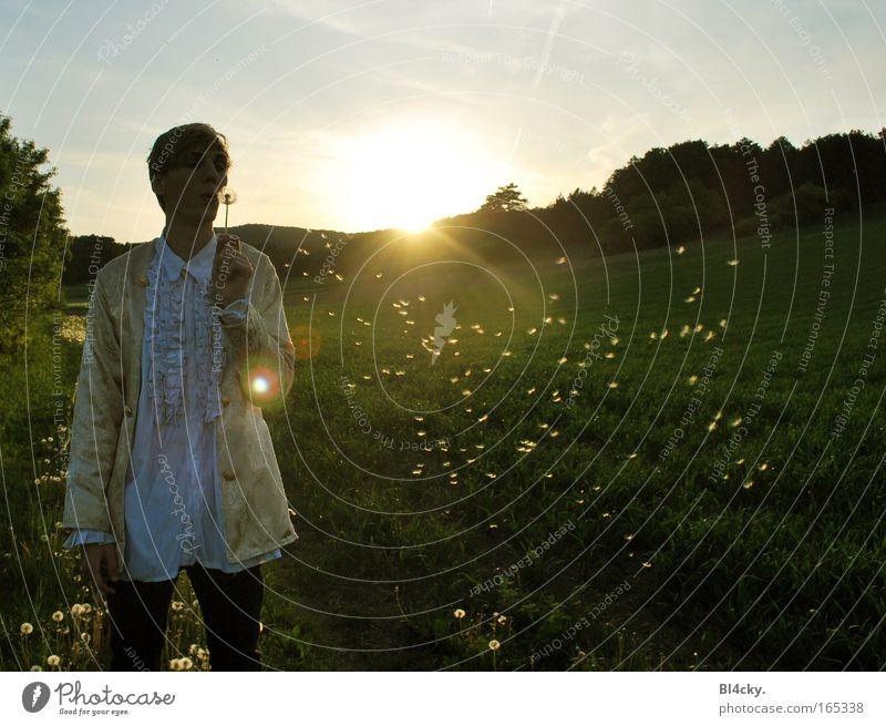 Heute wie damals Mensch Mann Natur Jugendliche Himmel Sonne Pflanze Sommer Wald Wiese Gras Berge u. Gebirge Frühling Freiheit Landschaft Feld