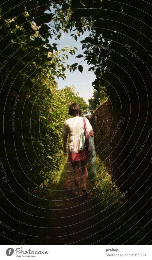 Lichtgang Himmel Natur Jugendliche schön Ferien & Urlaub & Reisen Einsamkeit Erholung feminin Wege & Pfade träumen Beine Park Freizeit & Hobby Rücken gehen Sträucher