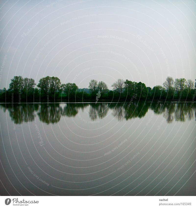 even Himmel Natur Wasser Baum ruhig Ferne Erholung Landschaft Horizont Zufriedenheit Sträucher Fluss genießen Flussufer Symmetrie Wasseroberfläche
