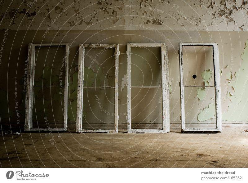 FENSTER PUTZEN Farbfoto Gedeckte Farben Innenaufnahme Menschenleer Tag Licht Schatten Kontrast Ruine Gebäude Mauer Wand Fenster Stein Holz alt Fensterrahmen