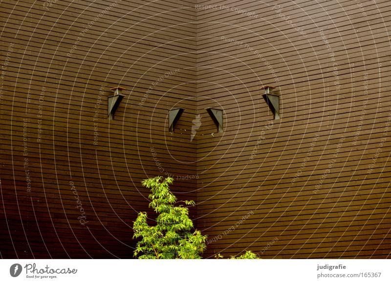 Grün im Eck Natur grün Baum Pflanze Architektur Gebäude braun Arbeit & Erwerbstätigkeit Fassade Design ästhetisch Wachstum Sträucher Bauwerk Stadtleben