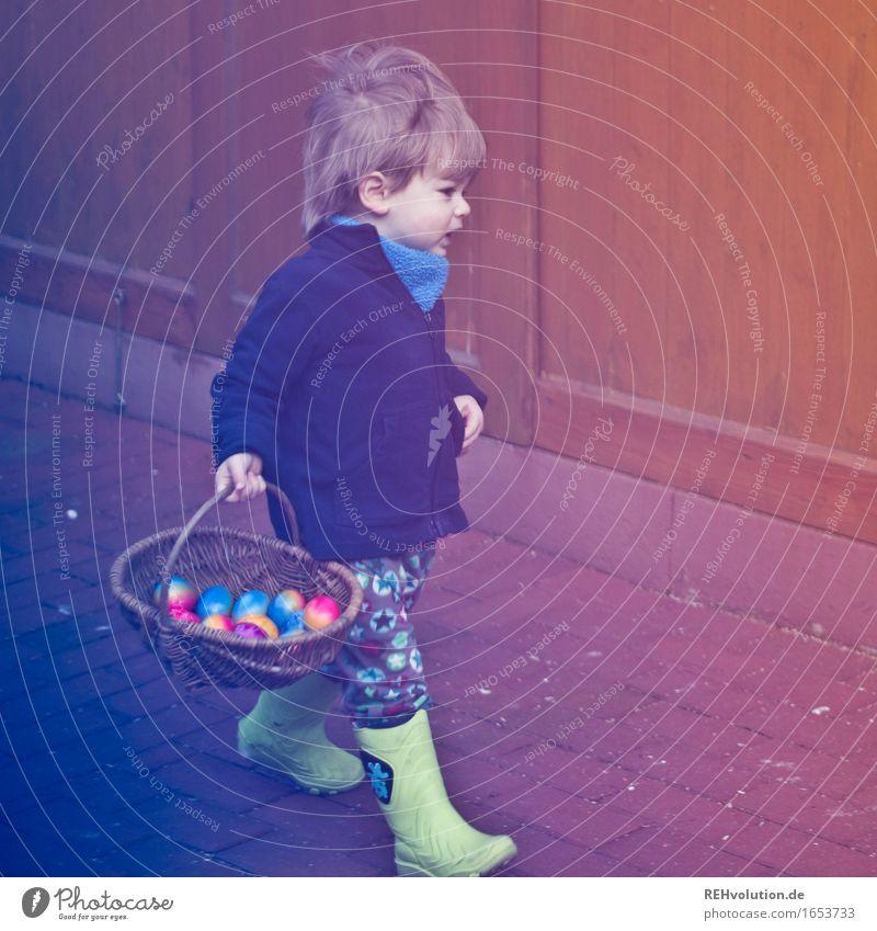 Eiersuche Mensch Kind Freude Frühling Junge Glück Garten gehen Zufriedenheit maskulin Kindheit authentisch Erfolg Fröhlichkeit Ostern festhalten