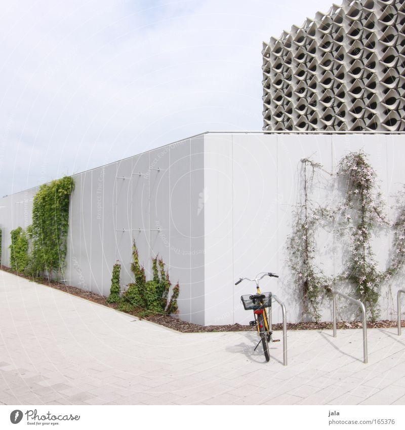 Meet me by the bike rack Himmel weiß Stadt grün Pflanze Haus Wand Architektur Mauer Gebäude hell Fahrrad elegant frei ästhetisch Bauwerk