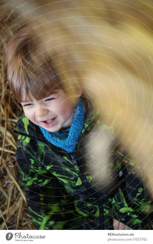 Spaß im Stroh Mensch maskulin Kind Kleinkind Junge Gesicht 1 1-3 Jahre lachen sitzen authentisch Freundlichkeit Fröhlichkeit lustig niedlich gelb gold Gefühle