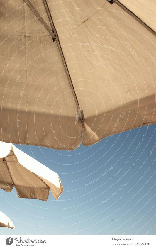 beschirmt! Farbfoto Außenaufnahme Textfreiraum unten Tag Ferien & Urlaub & Reisen Sommerurlaub Sonnenbad Strand Erholung liegen nass Freude Lebensfreude Klima