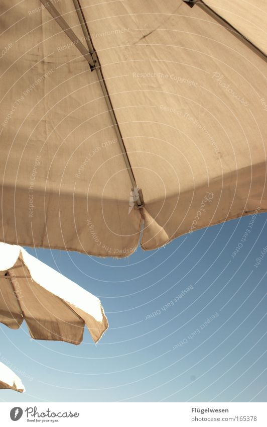 beschirmt! Freude Strand Ferien & Urlaub & Reisen Erholung nass liegen Klima Regenschirm Lebensfreude Sonnenschirm Sonnenbad Schirm Wetterschutz Sommerurlaub Schutz Regenschirmständer