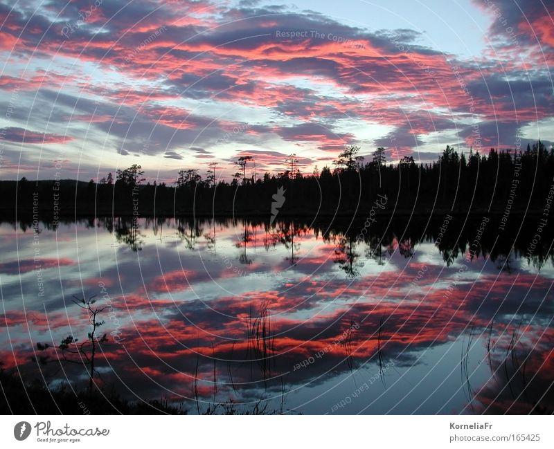 Abendwolken Farbfoto Außenaufnahme Menschenleer Textfreiraum links Textfreiraum rechts Textfreiraum oben Kontrast Reflexion & Spiegelung Sonnenaufgang
