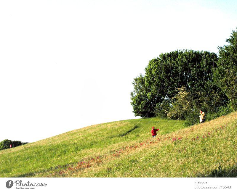 Rotkäppchen und der böse Onkel Kind Wiese Spielen Park lustig Rasen Spaziergang