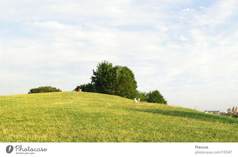 High Noon on the Hill Himmel Sonne Sommer Berge u. Gebirge Park Rasen Olympiaberg