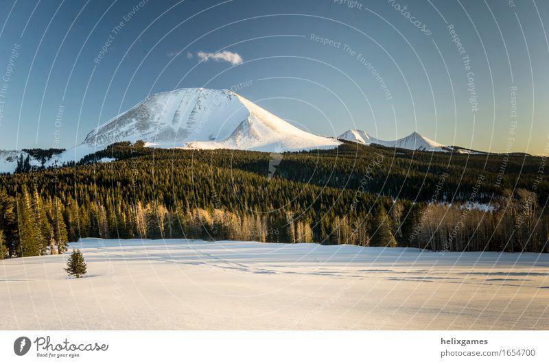 Berge bei Sonnenuntergang Ferien & Urlaub & Reisen Skifahren Natur Landschaft Winter Schnee Wald Berge u. Gebirge Gipfel Schneebedeckte Gipfel Zufriedenheit