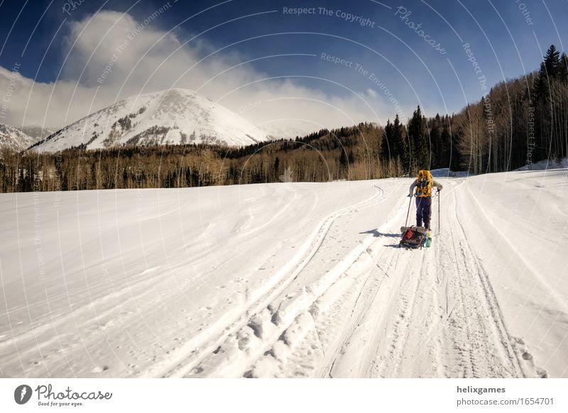 Berg Morgen Freizeit & Hobby Tourismus Abenteuer Expedition Camping Winter Schnee wandern Skifahren maskulin 1 Mensch Berge u. Gebirge Gipfel
