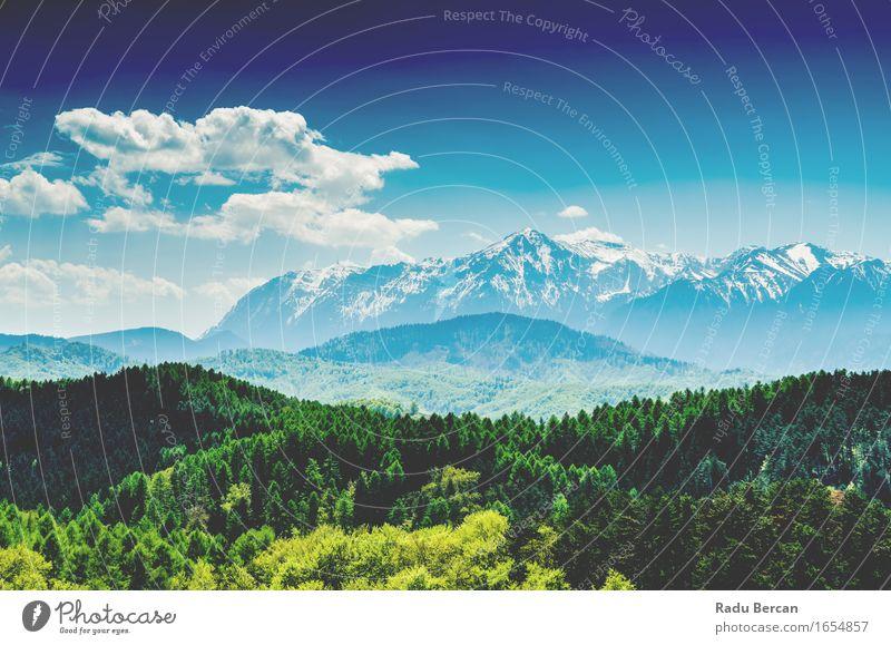 Karpatenberge Landschaft mit blauem Himmel im Sommer Umwelt Natur Erde Luft Wolken Baum Wald Berge u. Gebirge grün türkis friedlich Abenteuer Zufriedenheit