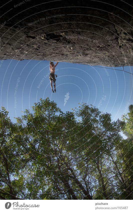 einfach mal abhängen Abenteuer Berge u. Gebirge Sport Klettern Bergsteigen Mann Erwachsene Natur Wald Felsen festhalten sportlich Coolness gigantisch muskulös