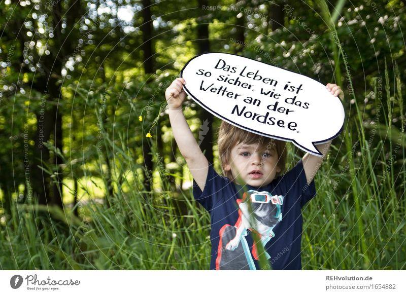 Das Leben ist so sicher ... Mensch maskulin Kind Kleinkind Junge 1 1-3 Jahre Umwelt Natur Sommer Baum Gras Wald grün Coolness Akzeptanz Vertrauen Sicherheit