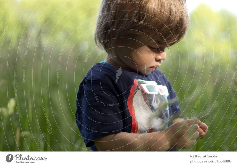 intensive beobachtung Mensch Kind Natur Sommer grün Landschaft Freude Umwelt Wiese natürlich Gras Junge Spielen klein Freiheit Stimmung