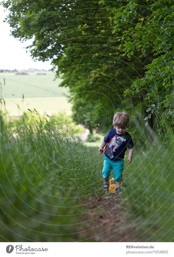 Am Waldrand Mensch Kind Natur Sommer grün Landschaft Wald Umwelt Wiese Wege & Pfade Junge Spielen klein Glück gehen maskulin