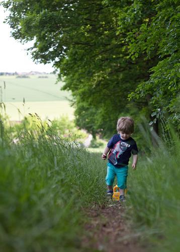 Am Waldrand Mensch Kind Natur Sommer grün Landschaft Umwelt Wiese Wege & Pfade Junge Spielen klein Glück gehen maskulin