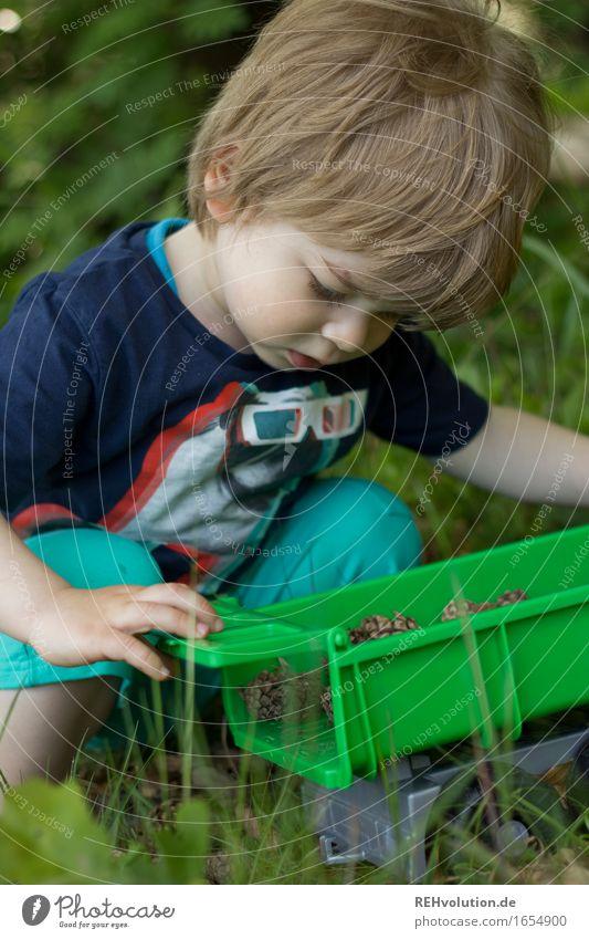 Spielen im Wald Mensch Kind Natur grün Baum Landschaft Freude Umwelt Gras Junge klein Glück maskulin Zufriedenheit