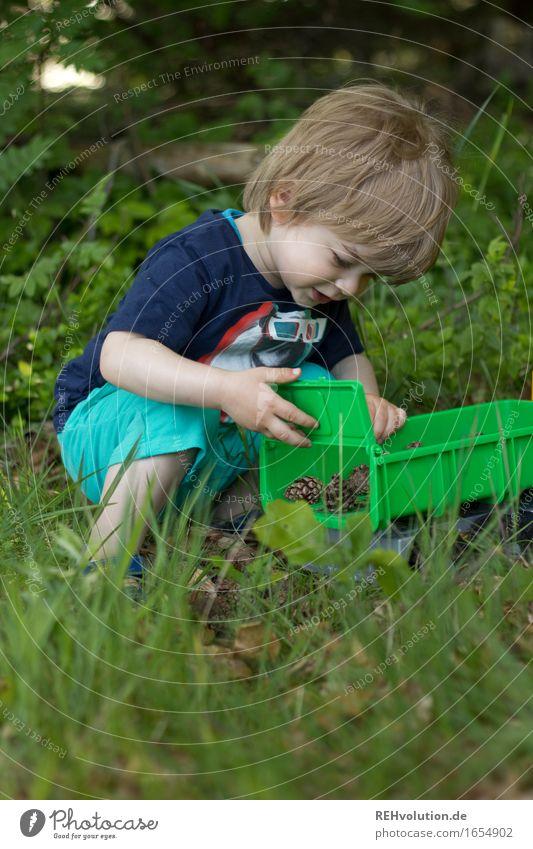 kipplaster Mensch maskulin Kind Kleinkind Junge 1 1-3 Jahre Umwelt Natur Pflanze Sommer Wald Spielen klein Neugier grün Freude Glück Begeisterung Leidenschaft