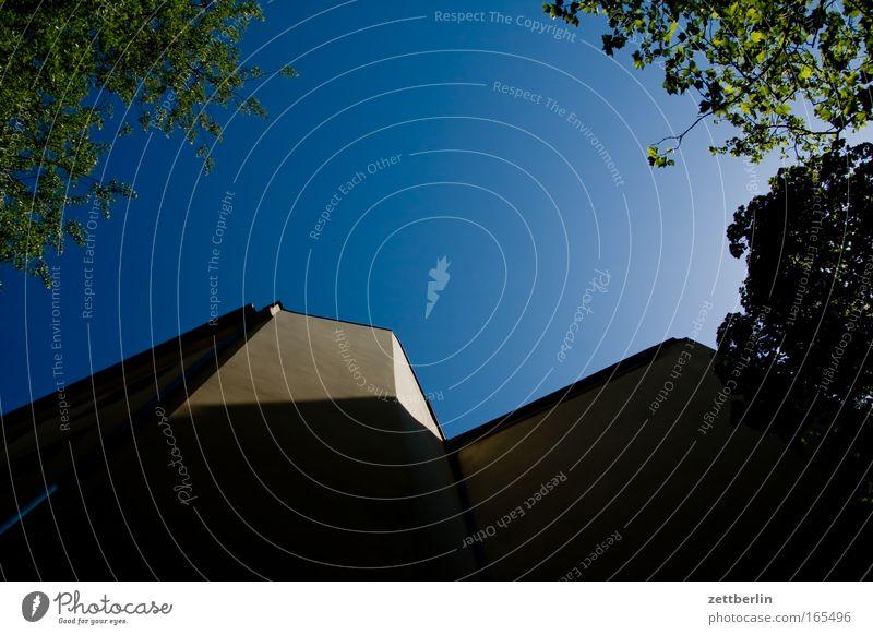 Hinterhof abends Himmel Baum Sommer Haus dunkel Fenster Wand Mauer Ast Schönes Wetter Wolkenloser Himmel Blauer Himmel himmelblau Stadthaus Frühlingsgefühle