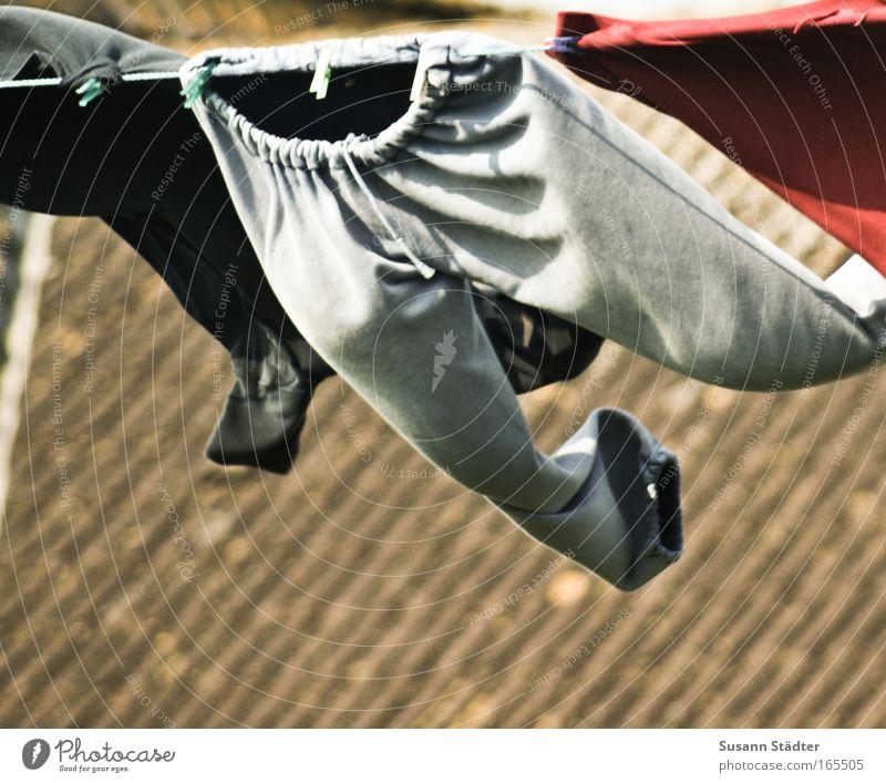 The flying Jogginghose Farbfoto mehrfarbig Außenaufnahme Textfreiraum links Textfreiraum unten Stil schön Ferien & Urlaub & Reisen Ausflug Freiheit Insel Wellen