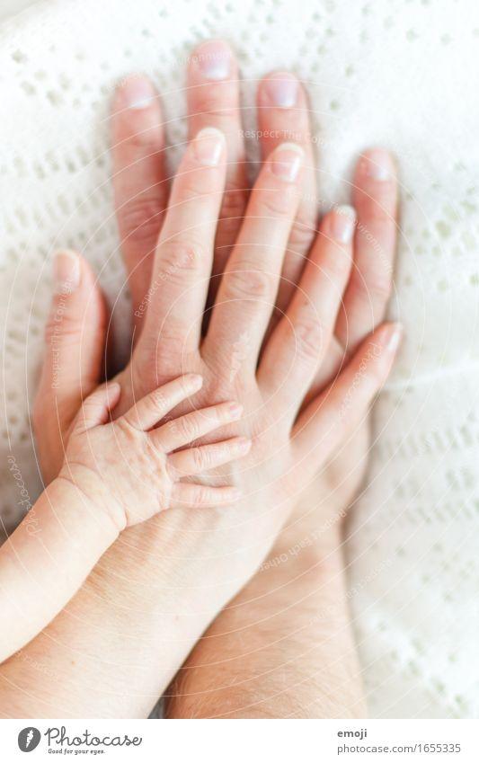 1+1=3 Mensch Baby Familie & Verwandtschaft Hand Menschengruppe 0-12 Monate Liebe Zukunft Familienglück Familienplanung Zusammensein Farbfoto Innenaufnahme