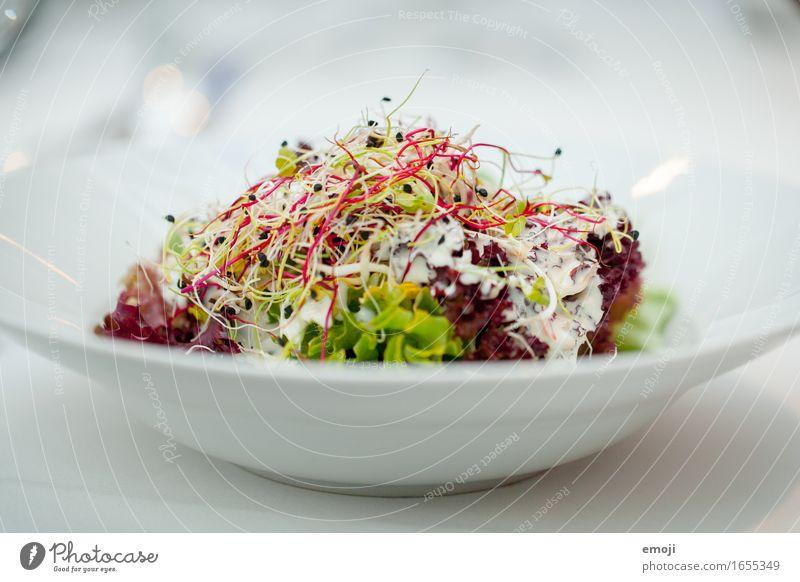 Vorspeise Gesundheit frisch Ernährung Abendessen Diät Mittagessen Salatbeilage Festessen