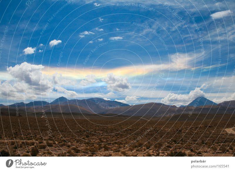 Wüstenzauber Himmel Natur blau Pflanze Ferien & Urlaub & Reisen Wolken Einsamkeit Freiheit Berge u. Gebirge Landschaft Gras Sand Wärme Erde wandern Klima
