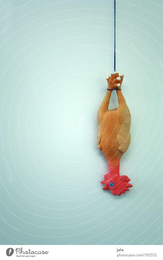 I feel like chicken today Erholung Tier lustig Tod außergewöhnlich verrückt Ernährung Kochen & Garen & Backen einzigartig Coolness Kunststoff Spielzeug trashig Figur Haushuhn Nutztier