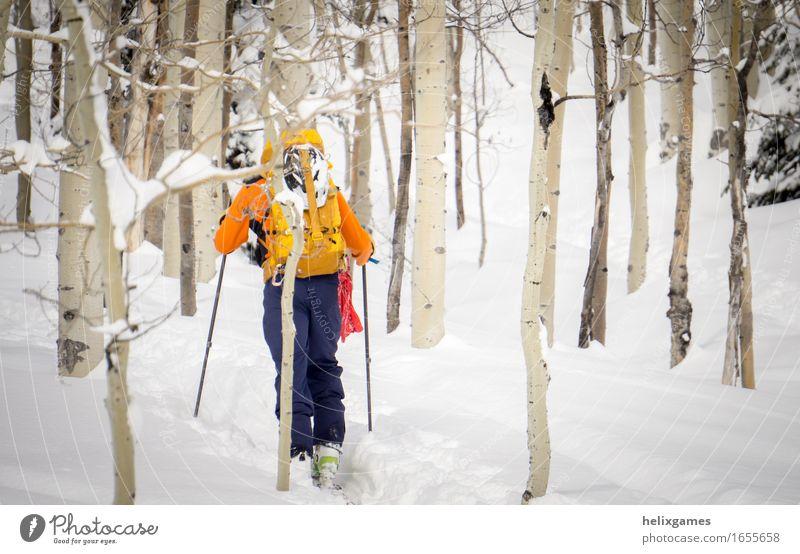Mensch Natur Ferien & Urlaub & Reisen Jugendliche blau weiß Baum Landschaft Winter Wald 18-30 Jahre Berge u. Gebirge Erwachsene Schnee Sport Aktion