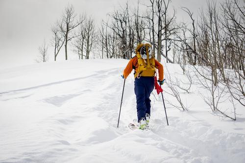In der Nähe des Gipfels Mensch Natur Ferien & Urlaub & Reisen Jugendliche Mann blau weiß Baum Landschaft Winter Wald 18-30 Jahre Berge u. Gebirge Erwachsene