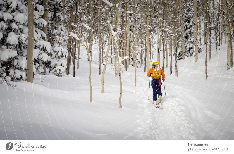 Mensch Natur Ferien & Urlaub & Reisen Jugendliche Mann blau weiß Baum Landschaft Winter Wald 18-30 Jahre Berge u. Gebirge Erwachsene Schnee Sport