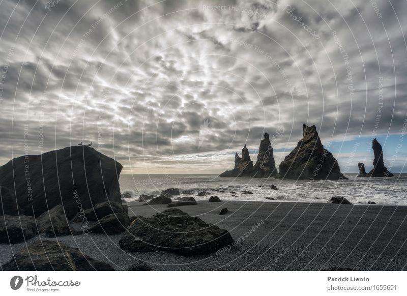 Reynisfjara schön Leben Ferien & Urlaub & Reisen Abenteuer Strand Meer Insel Wellen Umwelt Natur Landschaft Urelemente Erde Sand Himmel Wolken Klima Klimawandel