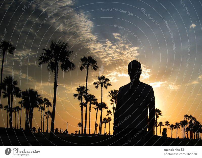 sunset Mensch Sonne Ferien & Urlaub & Reisen Sommer Strand Freude Ferne Landschaft Freiheit Gelassenheit Lebensfreude Junger Mann Sonnenuntergang